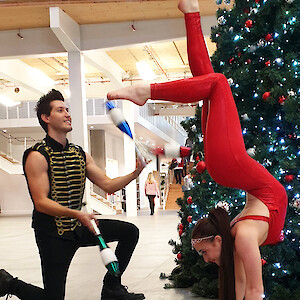 contortionist hire uk